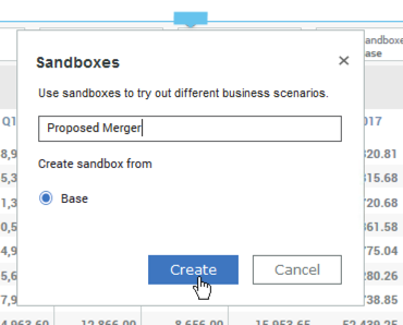 Naming a new sandbox in IBM Planning Analytics