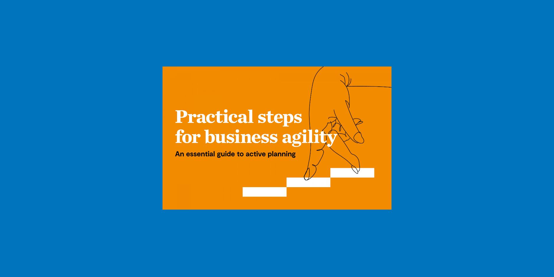 Practical Steps for Business Agiltiy